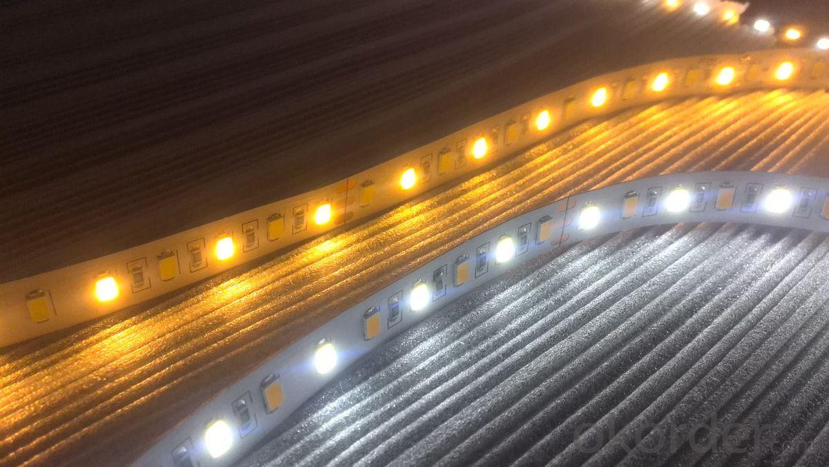 Double color SMD5630 LED strip,SAMSUNG/Epister Chip White+Warm White LED strip light