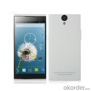 Brand New 5.0 inch Android 4.2 OGS IPS Octa Core Smartphone