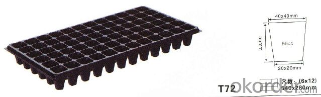 Plastic tree seed tray T72