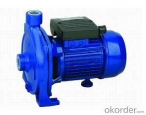 CP Centrifugal Water  Pump
