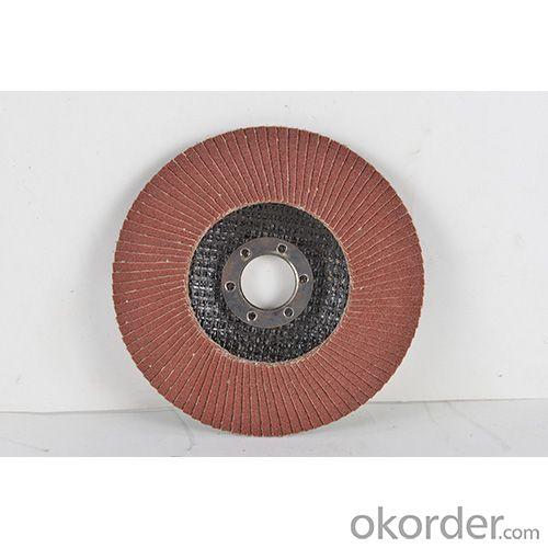 ALUMINUM OXIDE ABRASIVE SCREEN BELT