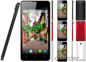 MTK6582 Quad Core 1GB/8GB Android 4.4 5.5 inch Smartphone