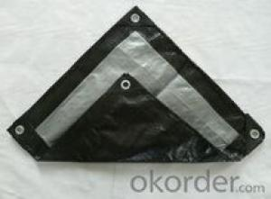 UV stabilized tarpaulin