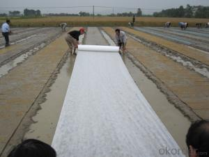 BS/APP MODIFIED BITUMEN WATERPROOFING MEMBRANE THREE