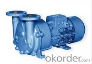 Water Ring Vacuum Pump