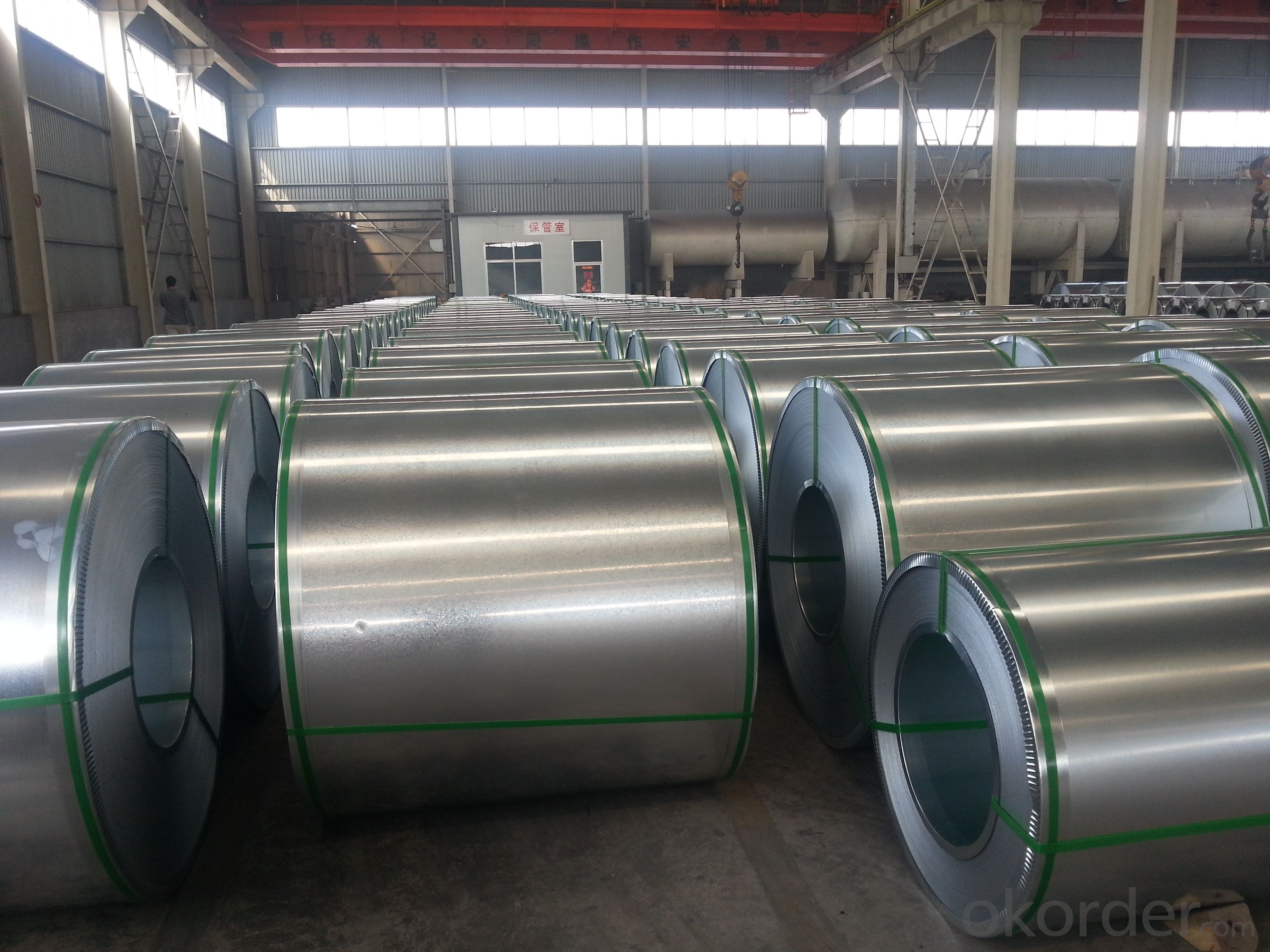 Galvanzied Steel Coil