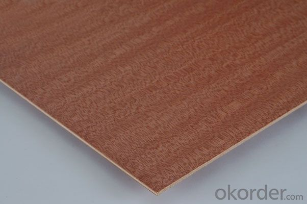 Small Size Plywood Door Skin Poplar Core 3'x7' 3'x6' or Other Small size available