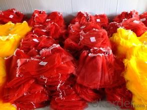 Monofilament Vegetable Bag Export to Spain