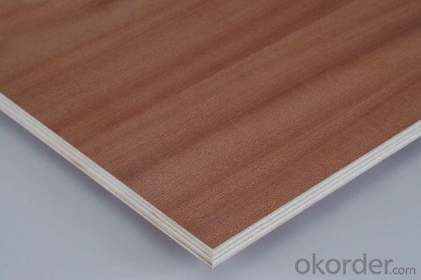 Good Quality Sapele Plywood Poplar Core 4'x8'