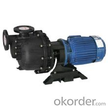 CG Self-priming Chemical Pump