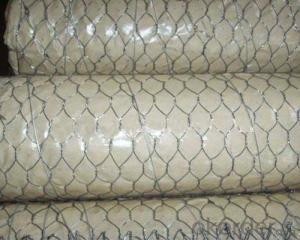 Popular Galvanized Hexagonal Wire Mesh
