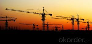 DAHA Tower Crane QTZ50