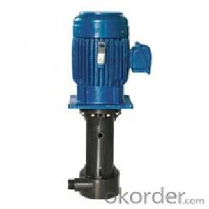 CS/CST Wet/dry Running Vertical Pump