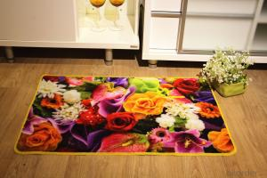 Nylon Printed Carpet with Flower Pattern and Latex Back