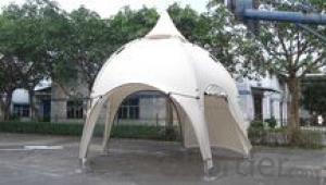 Hot Sales Star tent