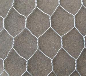 Popular Galvanized Hexagonal Wire Mesh