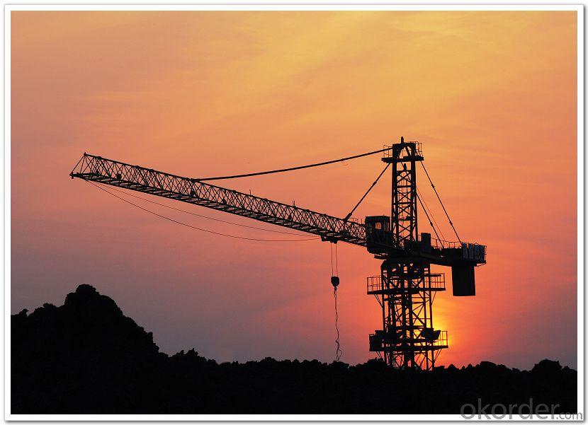 DAHA Tower Crane TC5013A