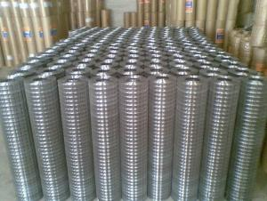 Gi Wire Mesh 0.48 mm Gauge china factory