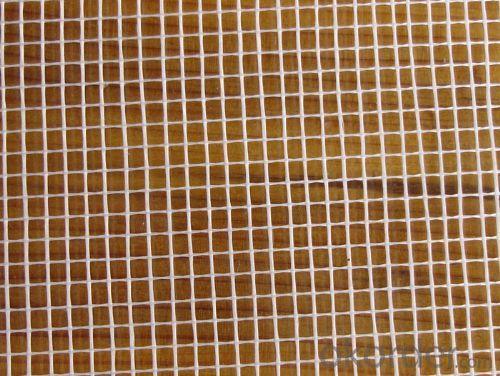 Fiberglass mesh 2.5 * 2.5 50g
