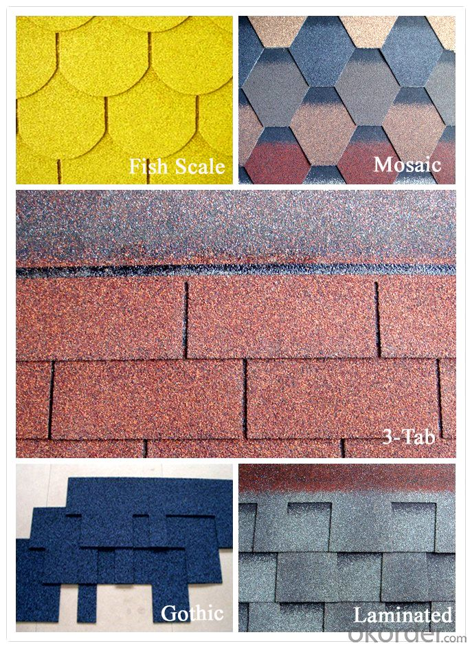 Asphalt shingle with good quality competitive price