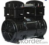 High Efficiency AC  Oil Free Piston Pump