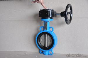 Butterfly Valve Ductile Iron Cast Iron Can be Customised High Quality