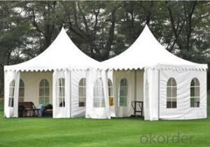 Party wedding tent with PVC covers