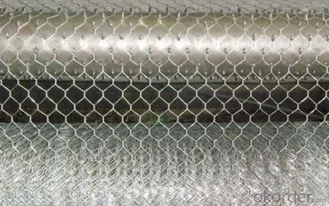 High Quality Galvanized Hexagonal Wire Mesh