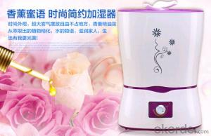 The new home 4.2L large capacity humidifier ultrasonic negative ion air support mixed batch