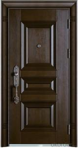 Steel Security Door for Houses