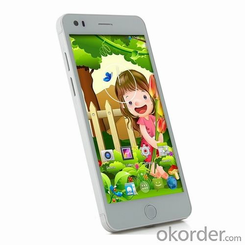 Mobile Phone 5.5'' IPS Quad Core 13MP Dual SIM 3G WCDMA GPS Android 4.4