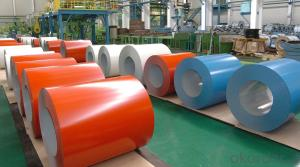 Aluminium PVDF Powered Coated in Coil Form
