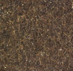 Polished Porcelain Tile The Soluble salt Brown Color CMAXSB6706