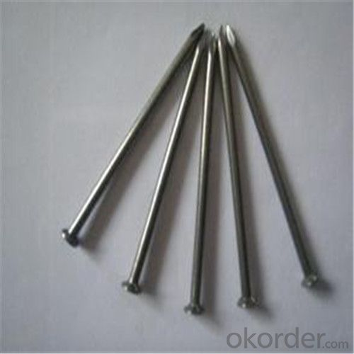 Galvanized Common Nail