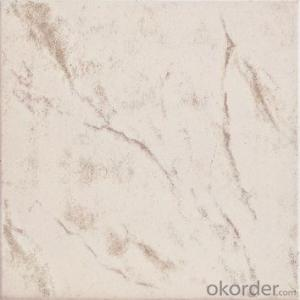 Glazed Floor Tile 300*300mm Item No. CMAXE3959