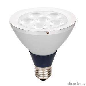 Led Decorative Light PL-509