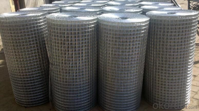 Wire Mesh, Galvanized Wire and Black Annealed Wire Factory