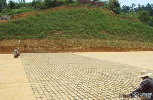 Geogrid for Asphalt Pavement Reinforcement