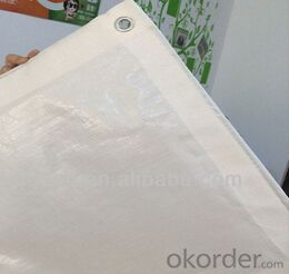 Waterproof white tarpaulin fabric for tent