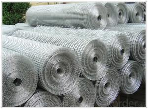 wire mesh products /weld mesh/gi wire/chain link fence/hexagonal mesh