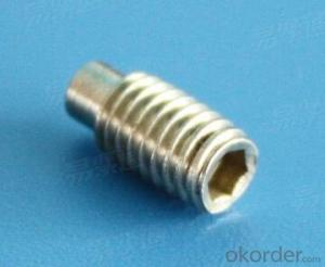 Hexagon Socket Set Screws with Dog Point DIN915