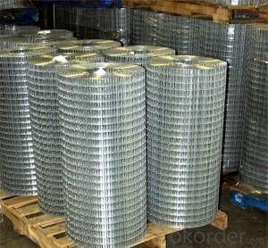 Welded wire mesh/galvanized welded wire mesh and pvc coated welded wire mesh/iron wire mesh