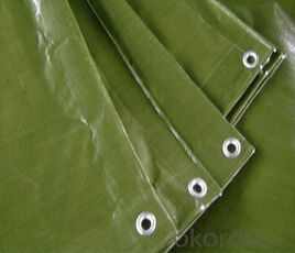 Green tarpaulin sheet