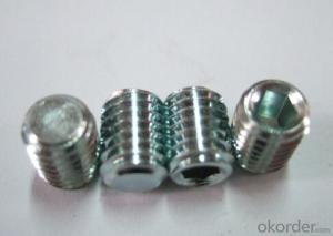 Hexagon Socket Set Screws with Flat Point DIN913