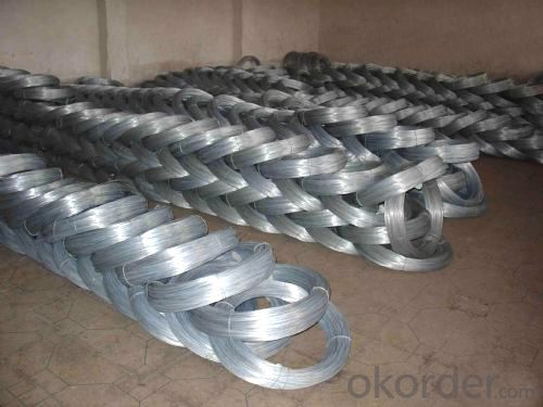 China wire mesh factory galvanized wire