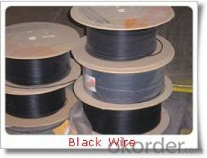 Electro/Hot Dipped Galvanized iron Wire/gi wire/china manufactory