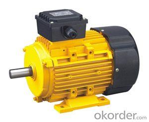Electric Motor Y2