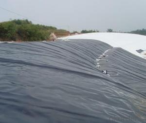LDPE Geomembranes