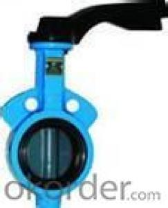 butterfly valve  wafer and lug styles