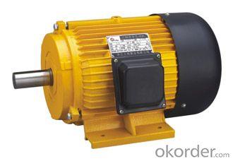 Electric Motor Y